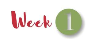 12 weeks w1