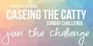 CTC_jointhechallengeFB2017